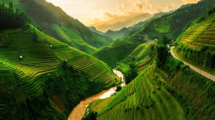 vietnam(2)